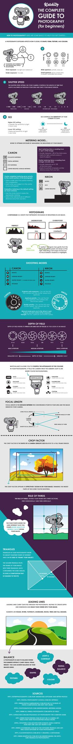The Complete Guide to Photography for Beginners (infographic)
