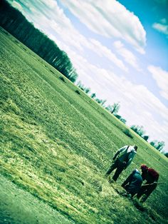 Amish farmer working in the field Soft And Gentle, Amish, Farmer, Ontario, Fields, Mountains, Landscape, Country, Nature