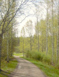 lumiukon mietteitä, luonto keväällä
