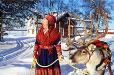 Lappland - Why do I strongly suspect they work for Santa Claus, taking care of all his reindeer?