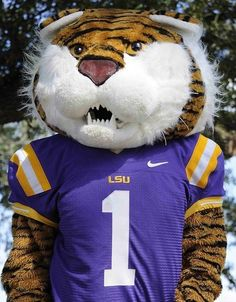 127 Best Mike The Tiger Mike Vi Images Mike D Antoni Tigers 4 Life