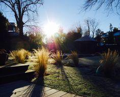 Garden Design – Secret Gardens |   Merchiston Garden