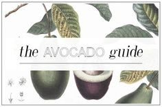 We love avocado! It'