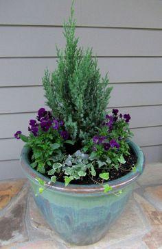Winter Container Garden Idea