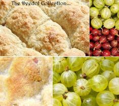 Gooseberry Cobbler.... https://grannysfavorites.wordpress.com/2015/07/02/gooseberry-cobbler/