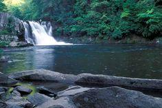 Abrams Falls Cades Cove TN
