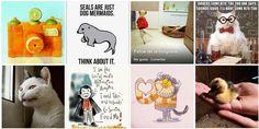 PicDeck : El Tweetdeck de Instagram