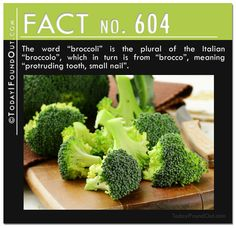 10 More Random Quick Facts