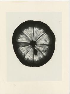 Denis Brihat, un citron
