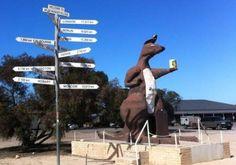 "The Big Kangaroo Border Village, Adelaide "" South Australia • aussie big things Australia"