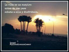 http://quiendicenoalamor.blogspot.com.es/2016/08/yo-voy-vivir-y-tu.html?m=1