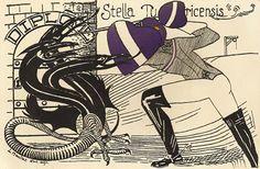 Stella Zürich