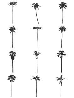 Tree Drawing Simple, Palm Tree Drawing, Palm Tree Art, Palm Trees, Palm Tree Sketch, Tree Sketches, Tree Drawings, Tree Dwg, Palm Tree Tattoo Ankle