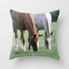 Brown and White Horse in Field Pillow Cover by BacktoBasicsPillows