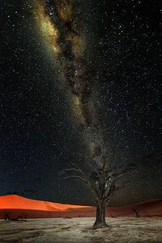 Photo: GOOD NIGHT MY FRIENDS Awesome Photography of The Milky Way in Deadvlei, Namibia ... By: Victor Carpentier. Via : https://500px.com/photo/142125921