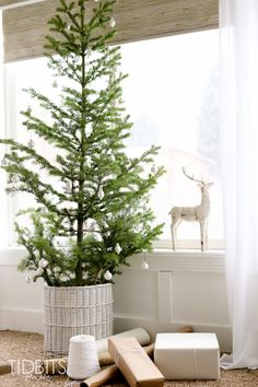 Enjoy a story of a Christmas tree along with a tour of the French Farmhouse Christmas scene in our master bedroom. Christmas Scenes, Cozy Christmas, All Things Christmas, Christmas Ideas, Holiday Fun, Holiday Ideas, Vintage Christmas, Christmas Decorations For The Home, Christmas Tablescapes