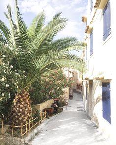 Plants, Travel, Viajes, Traveling, Flora, Plant, Trips, Tourism