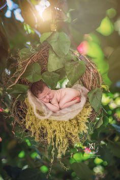 Digital backdrop/ prop  Newborn swing Joseline