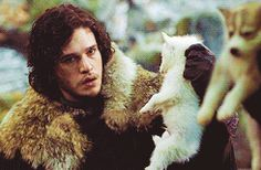 "A Jon Snow, Robb Stark & puppies gif - notkatniss: ""IVE BEEN LAUGHING AT THIS THEY JUST STARE AT EACH OTHER HOLDING PUPPIES"""