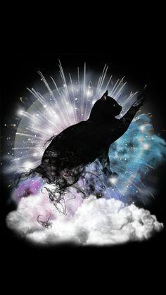 The Dream of Cats !   #Cats #cats #Dreams #dreams #Mystic #mystic #Mystery #mystery #Clipart #clipart #ClipartMania #clipartmania #Cliparts #cliparts #Stardust #stardust #Clouds #clouds #Fireworks #fireworks #Moon #moon  #AfterDarkPackage #afterdarkpackage #ClipartPackage #clipartpackage