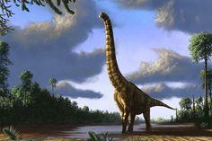 """Brachiosaurus at dawn Brachiosaurus, the iconic sauropod (""""lizard-footed"""") dinosaur from the Jurassic period, at dawn."""