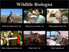 My professor just forwarded this to a few of us wildlife kids. made me laugh. Especially the steve irwin one