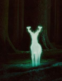 Harry Potter 31 Day Challenge: Day 24, Your Patronus