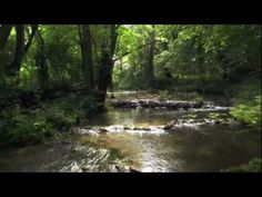 The most beautiful aerial drone shot i've ever seen.mp4 - YouTube
