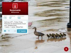 50 Twitter Tips (9). Cała prezentacja: http://www.slideshare.net/Socjomania/50-porad-jak-dziaac-na-twitterze  #Twitter #TwitterTips #SocialMedia #SocialMediaTips