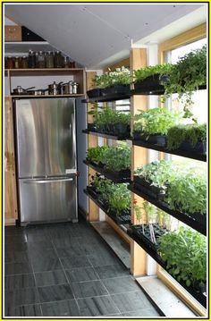 Indoor vegetable garden Vegetable Gardening for Beginners: Learn the basics of planting a garden, from planning out and designing the garden space to choosing the best vegetables to grow in your area. Gardening advice from The Old Farmer's Almanac. Indoor Vegetable Gardening, Vegetable Garden For Beginners, Organic Gardening, Gardening Tips, Container Gardening, Beginners Gardening, Gardening Quotes, Urban Gardening, Indoor Hydroponic Gardening