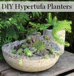 to make lightweight hypertufa planters for your garden and patio. They look like concrete, but are much lighter!How to make lightweight hypertufa planters for your garden and patio. They look like concrete, but are much lighter! Concrete Planters, Garden Planters, Succulents Garden, Hand Planters, Planter Pots, Garden Crafts, Garden Projects, Diy Projects, Container Gardening