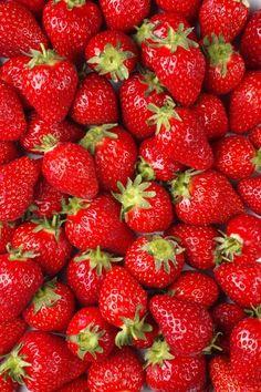 Conocarpo (fruto carnoso) de fragaria vesca (frutilla)