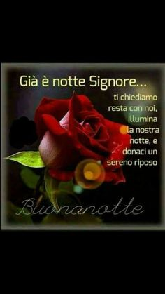 ... BuonANOTTE GESÙ Good Night Wishes, Good Morning Good Night, Prayers, Madonna, Sink Tops, Pictures, Good Night, Have A Good Night, Good Evening Wishes
