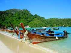 Phi Phi Island Phi Phi Island, Travel Agency, Thailand, Boat, Dinghy, Boats, Ship