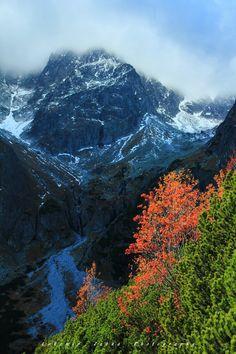 Autumn in the mountain. - Autumn in High Tatras, Slovakia.