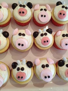 Cow and Pig Cupcakes
