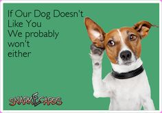 If Our Dog Doesn't Like You We probably won't either | Snarkecards