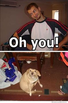 Ok, I've seen this many times now and every single time, it makes me laugh. Therefore, it must be shared! That guy (and dog) are adorable! (Thanks, Debby!)