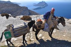A farmer on Amorgos Mykonos, Santorini, Paros, Zorba The Greek, Republic Of Macedonia, Greek Culture, Greece Islands, Blog Voyage, Archipelago