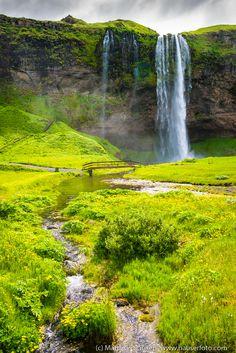 Waterfall in a green landscape paradise: Seljalandsfoss in Iceland. Lots of…