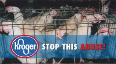 Petition · Kroger: Tell Kroger to Stop Caging Hens · Change.org
