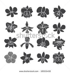 Couple Design Over White Background Vector Illustration - 149452925 : Shutterstock Orchid Drawing, Skin Paint, Flower Symbol, Silhouette Tattoos, Stencil Art, Stenciling, Iris Flowers, Abstract Drawings, Flower Images