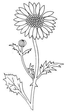 Daisy Flower CIP Art Silhouette Floral Wreath Clip Art