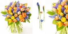 Faire un bouquet printanier : tulipes, jacinthes et renonculesFleurs et feuillages : 15 tulipes double orange 15 jacinthes bleues 15 renoncules orange 15 rameaux de gaultérie 30 muscaris bleus
