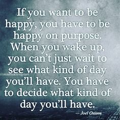 You can't just wait to see what kind of day you'll have, you have to decide what kind of day you'll have. @joelosteen