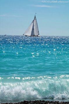 Ocean Sea:  #Sailboat.