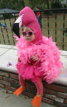 Cutest thing i have ever seen! Pink Flamingo toddler costume & I just found Kinsley's Halloween costume lmao