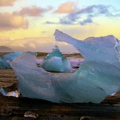 In Iceland there lives a black beach covered in ice cubes the size of SUVs. Jokulsarlon, a glacier lagoon, is one of the many frozen wonders in this incredible country. Giant blue and white pieces of glacier break off and slowly make their way into the Atlantic.  But first many beach on the packe...
