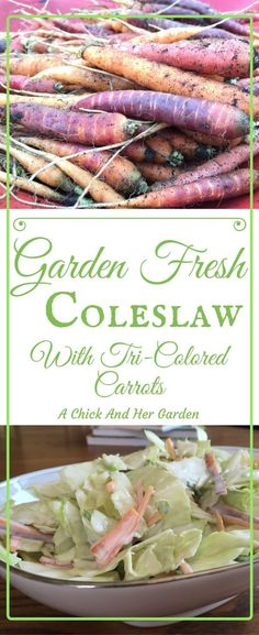 Garden Fresh Coleslaw With Tri-Colored Carrots - A Chick And Her. Garden Fresh Coleslaw With Tri-Colored Carrots - A Chick And Her Garden New Recipes, Whole Food Recipes, Dinner Recipes, Healthy Recipes, Healthy Salads, Easy Recipes, Favorite Recipes, Family Recipes, Amazing Recipes