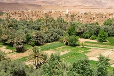 A typical Dades Valley kasbah, Kelaa M'Gouna, in Vallée du Rose, Morocco